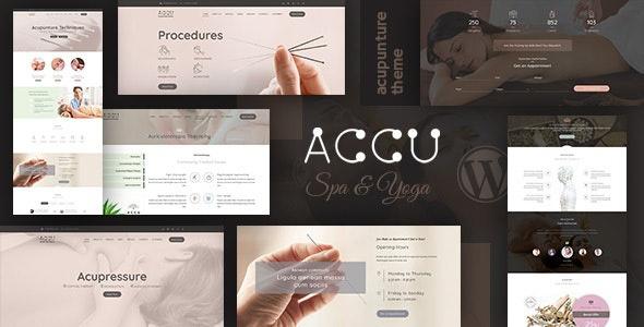 قالب وردپرس Accu 1