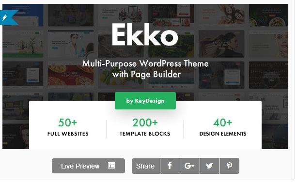قالب وردپرس Ekko 1