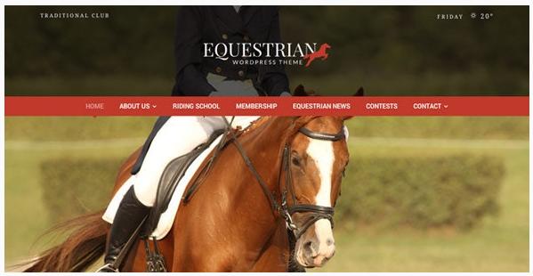 قالب وردپرس Equestrian 1