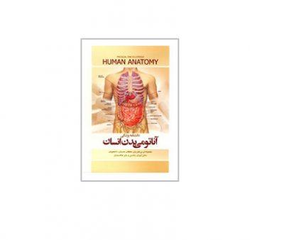 آناتومی بدن انسان 2